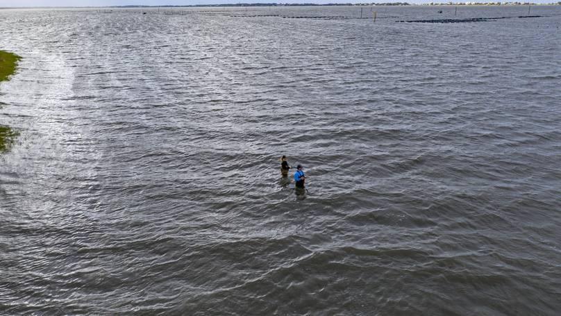 'Vùng chết' khổng lồ nơi không sinh vật biển nào có thể sống sót