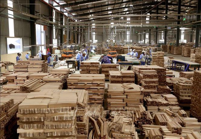 Nửa đầu năm, xuất khẩu gỗ và sản phẩm gỗ tăng 62,6%
