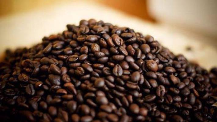Xuất khẩu cà phê 6 tháng đầu năm đạt gần 1,55 tỷ USD