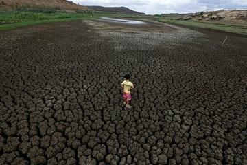 Hậu quả 'chưa từng có' của biến đổi khí hậu khắp thế giới
