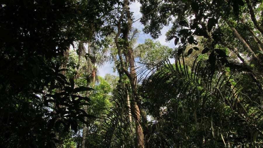 Những địa điểm tự nhiên không có tiếng ồn nhân tạo hiếm hoi trên thế giới