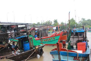 Trên 98% tàu cá ở Bạc Liêu đã lắp đặt thiết bị giám sát hành trình