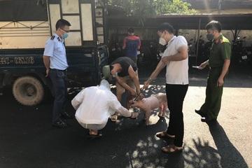 Bắc Giang chặn đứng xe chở gần 1,8 tấn lợn mắc bệnh dịch tả châu Phi