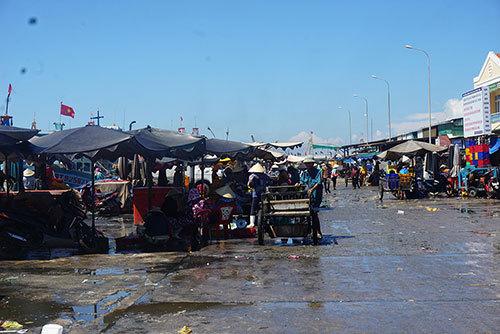 cảng cá,ngư dân,kinh tế biển,Bình Thuận