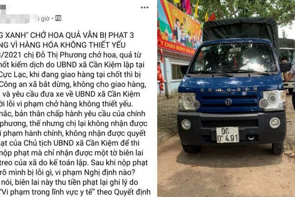 'Xe tải 'luồng xanh' chở hoa quả bị phạt 3 triệu' gây xôn xao: Xe tải chở hoa tươi!