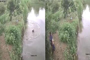 Cháu bé trượt chân ngã, chìm nghỉm dưới hồ nước, được chủ hồ phát hiện cứu sống trong tích tắc