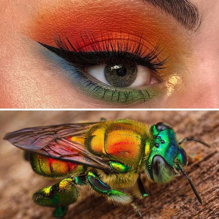 Ngỡ ngàng trước những tuyệt phẩm trang điểm lấy cảm hứng từ côn trùng
