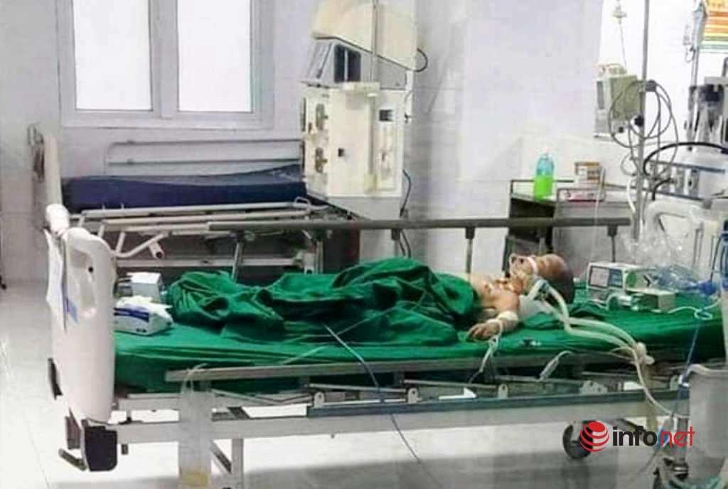 Nhiều bệnh nhi ở Nghệ An bị ong đốt hàng trăm vết nguy kịch