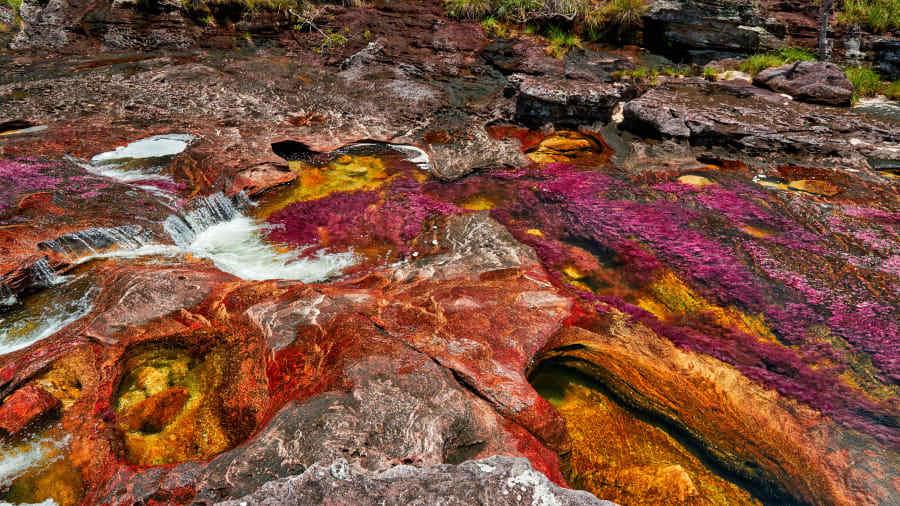Ấn tượng vẻ đẹp dòng sông cầu vồng độc nhất vô nhị trên thế giới