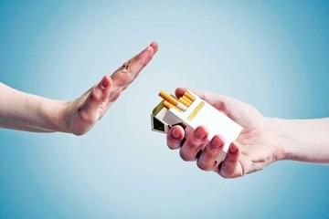 Bộ Tài nguyên và Môi trường nhân rộng mô hình 'văn phòng xanh, công sở không khói thuốc'