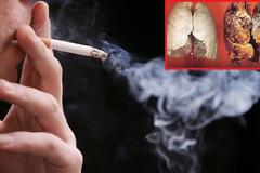 Cao Bằng: Huyện Hà Quảng xây dựng môi trường không thuốc lá