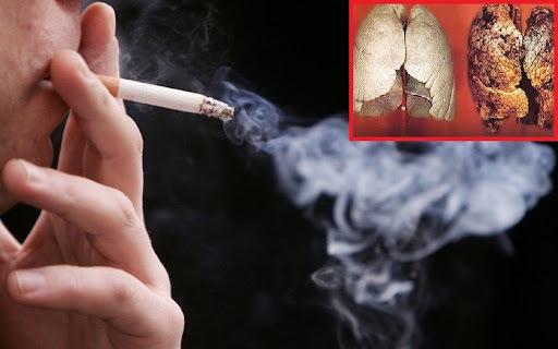 thuốc lá,tác hại thuốc lá