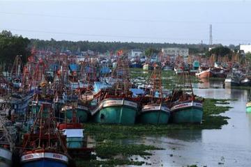Kiên Giang: Phấn đấu xuất khẩu thủy sản tăng bình quân 10%/năm