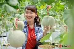Cô gái bỏ việc nhà nước về làm vườn dưa lưới đẹp mê mẩn, khách mua lẻ hết veo cả tấn quả