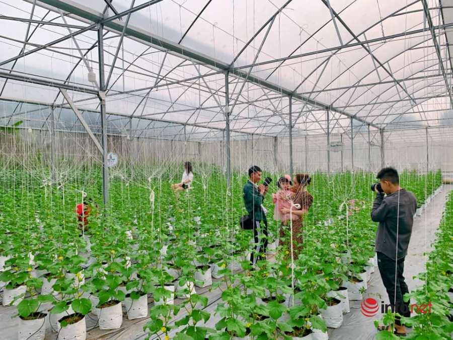 khởi nghiệp,8X khởi nghiệp,nông nghiệp sạch,nông nghiệp công nghệ cao