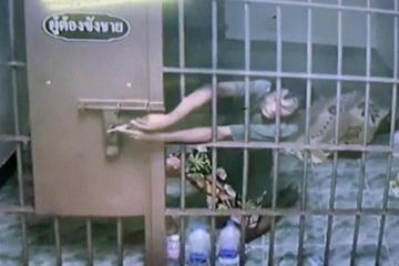 Phạm nhân trốn trại trong đêm nhờ ghim kẹp giấy nhưng vẫn lọt camera