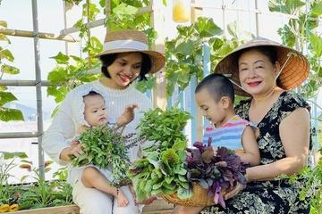 Sống khỏe trong dịch nhờ trồng gần 20 loại rau, củ, quả ở sân thượng