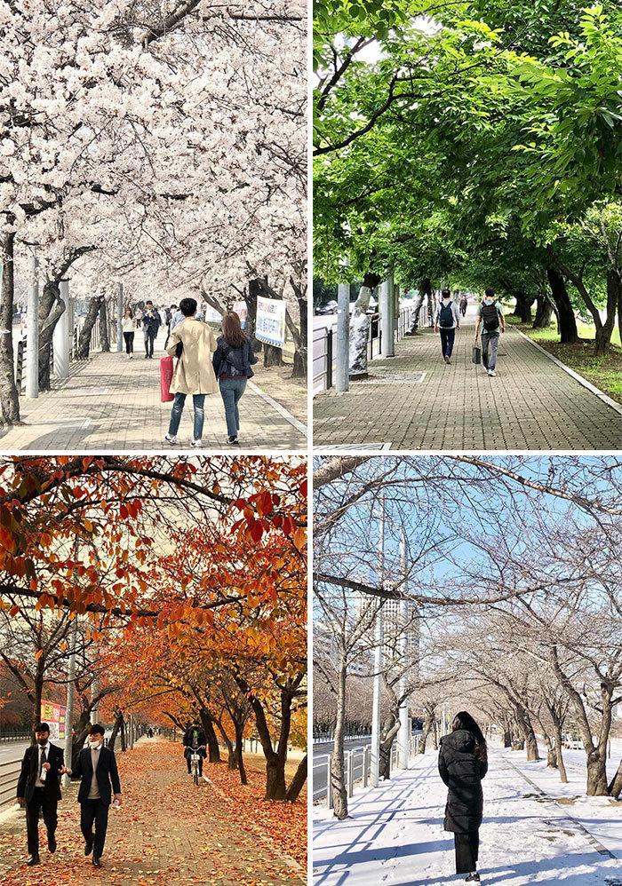 Hàn quốc,ảnh đặc sắc