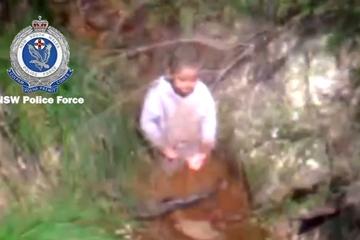 Cậu bé 3 tuổi sống sót thần kỳ sau 3 ngày mất tích trong rừng sâu