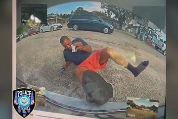 Báo bị ô tô đâm gây thương tích, nạn nhân không ngờ bị bắt giam