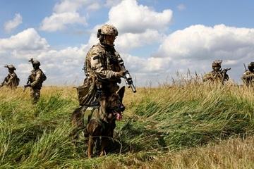 Thất bại ở Afghanistan khiến châu Âu phải suy nghĩ về việc phòng thủ