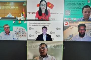 Cơ hội hợp tác Doanh nghiệp Việt Nam và Singapore, tiếp cận thị trường EU và Anh thông qua FTA