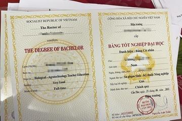 Quảng Nam: Khởi tố các đối tượng trong đường dây làm giả sổ đỏ, bằng đại học, đăng ký xe