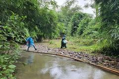 Huế: 37 người dân vào rừng hiện không liên lạc được sau bão số 5
