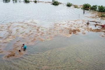 Bão số 5 gây thiệt hại nặng ở Quảng Ngãi, đảo Lý Sơn nhiều nhà tốc mái
