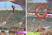 Khán giả kín sân vận động hồi hộp theo dõi màn giải cứu mèo có một không hai