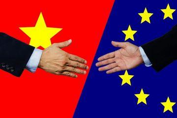 Lập nhóm tư vấn trong nước về thương mại và phát triển bền vững trong EVFTA