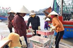 """Ngư dân Nghệ An khắc phục cảnh báo """"thẻ vàng"""""""