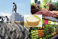 Kết nối giao thương Ấn Độ - Mê Kông, thúc đẩy thương mại xuyên biên giới