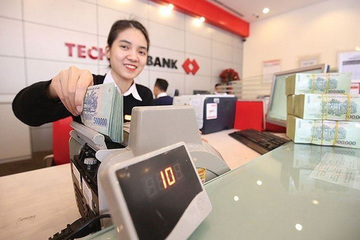Những ai mua được cổ phiếu ưu đãi giá rẻ của Techcombank?