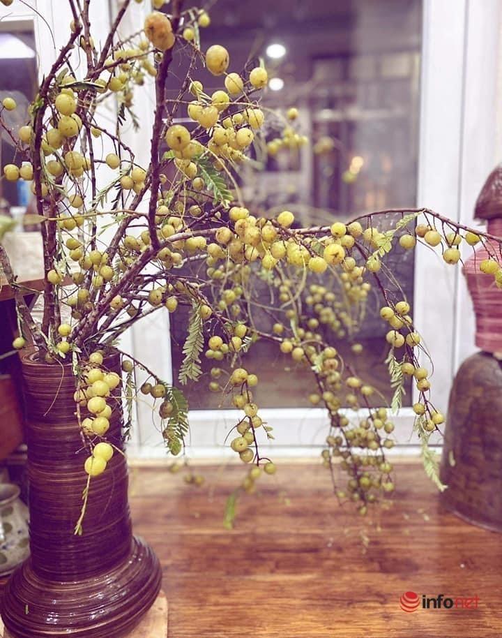 Tiệm hoa Hà Nội có loại quả rừng hoang dại cực lạ mắt phục vụ chị em cắm chơi trong nhà