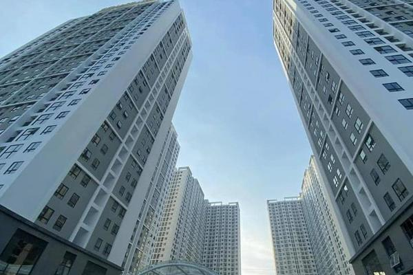 Đầu tư bất động sản chỉ cần có vài triệu đồng, có ngon ăn?