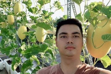 Vườn dưa sân thượng đẹp như tranh của ông bố 8X ở Thái Bình