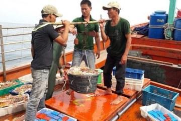 Quảng Bình thúc đẩy xuất khẩu nông lâm thủy sản