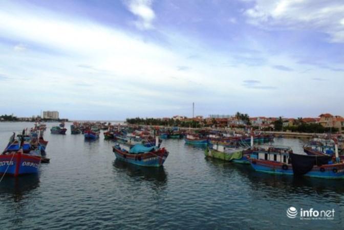 Quảng Bình có hơn 1.000 tàu cá dài từ 15m trở lên đã lắp đặt thiết bị giám sát hành trình
