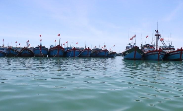 Quảng Ngãi có 2.754 tàu cá lắp đặt thiết bị giám sát hành trình