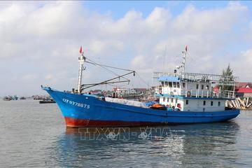 100% tàu cá đang hoạt động của Tiền Giang đã lắp đặt thiết bị giám sát hành trình