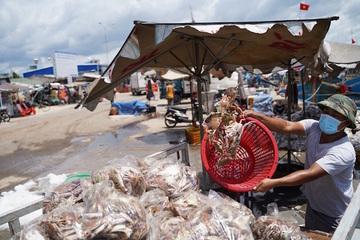 Bình Thuận: Đảm bảo an toàn phòng dịch cho người và hải sản tại cảng cá La Gi
