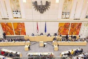 Nghị sĩ Áo bất ngờ ngất xỉu tại cuộc họp quốc hội