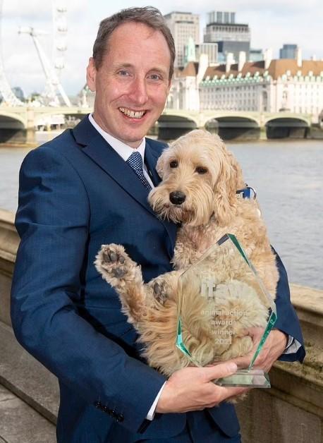 Chó trị liệu được giải 'Động vật của năm' với thành tích hỗ trợ nhân viên y tế