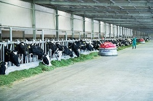 Liên doanh của Vinamilk ra mắt sản phẩm tại Philippines, đặt mục tiêu chiếm 10% thị phần sữa