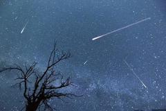 Chiêm ngưỡng mưa sao băng Orionids đạt cực đại vào đêm nay