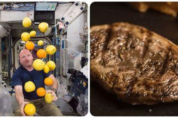Ý tưởng độc đáo chiến thắng cuộc thi về thức ăn trong không gian của NASA